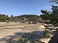 View of Itsukushima Shrine from West Pine Grove 2.jpg