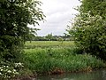 View towards Cassington - geograph.org.uk - 908903.jpg