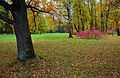 Views of Oranienbaum Park 05.jpg