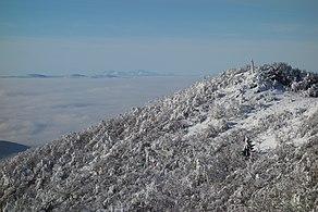 Vihorlat (v zime) 034.jpg