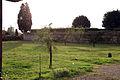 Villa la quiete, giardino, orto 01.JPG