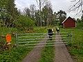 Vilskeleden passerar hage vid Floby 20210527.jpg