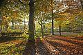 Visdonk in de herfst - panoramio.jpg