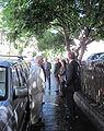 Visite du Branchage Juilet 2010 Saint Hélyi d.jpg