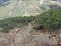 Vistas desde el Castillo de Cabañas 35.jpg