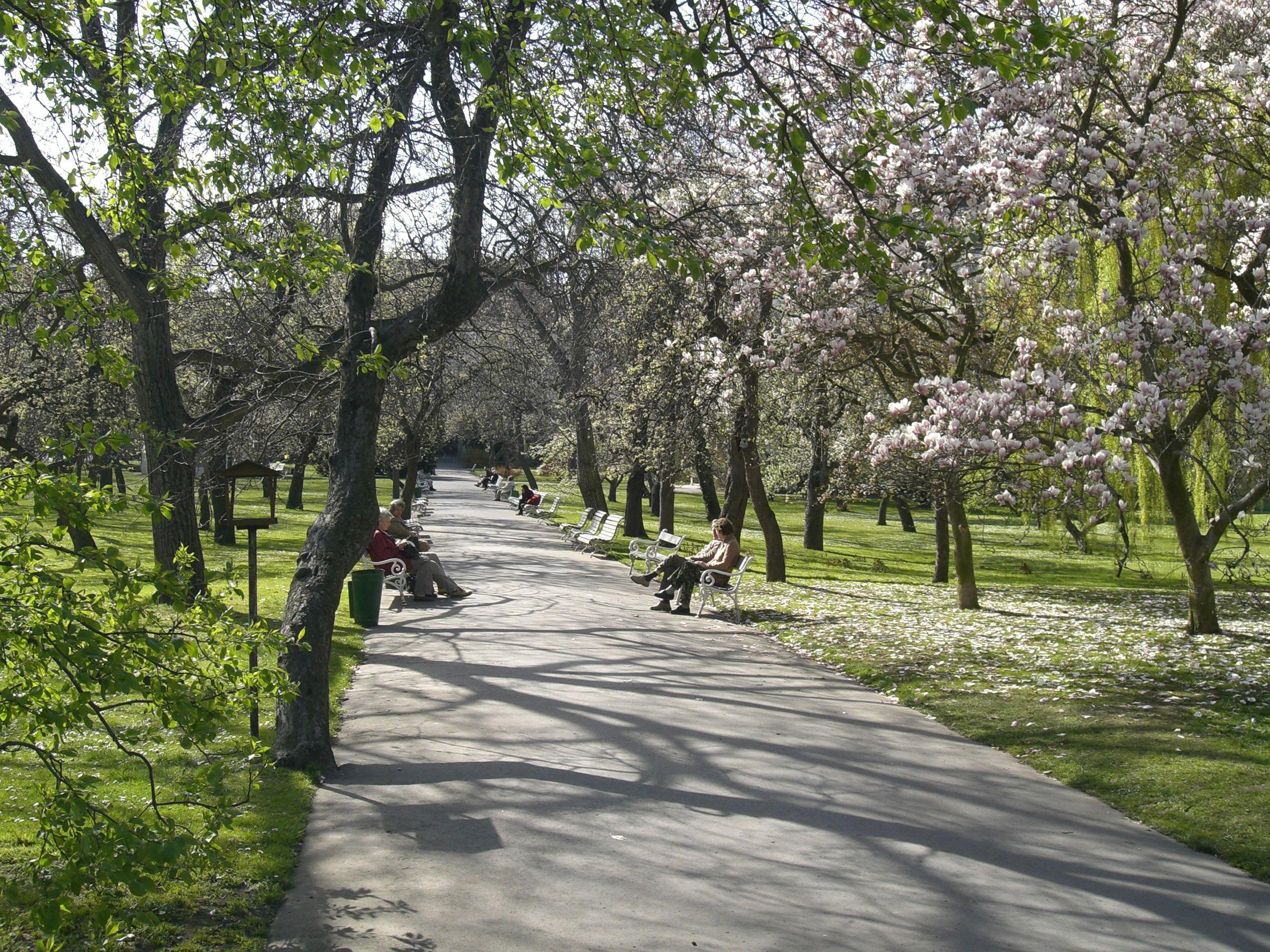 Vojanovy sady na jaře