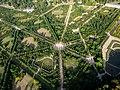 Vue aérienne du domaine de Versailles par ToucanWings - Creative Commons By Sa 3.0 - 134.jpg