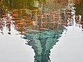 Wade Lagoon Koi Fish (22374724029).jpg