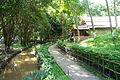 Walkway - Vietnam Museum of Ethnology - Hanoi, Vietnam - DSC03430.JPG