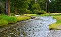 Wallowa River Near Wallowa Lake, Oregon (37122538904).jpg