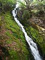 Water fall at la vie de Planfoy - panoramio.jpg