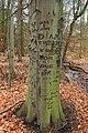 Wayne Township Nature Park (3) (11020395334).jpg