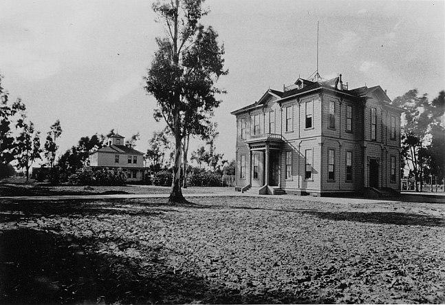 Widney 1903