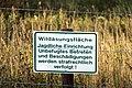 Wildäsungsfläche zwischen Nettersheim und Engelgau-2235.jpg