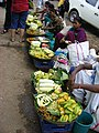Wild Fruits Forest Produce in SGNP Mumbai by Raju Kasambe DSCF0144 (1) 05.jpg