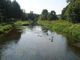 The river Vilnia at Naujoji Vilnia town