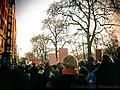 Women's March London (32148799654).jpg