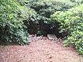 Woodland Burial - geograph.org.uk - 569341.jpg
