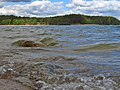 Wzburzona tafla wody w jeziorze Wdzydze.jpg