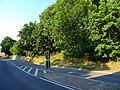 Zehista, 01796, Germany - panoramio (2).jpg
