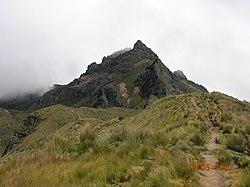 Zum Rucu Pichincha.jpg