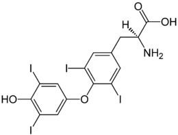 stereochemisch neutrale Darstellung von Thyroxin