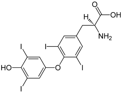 (S)-Thyroxine Structural Formulae.png