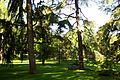 ® M.D. MADRID PASEO del PINTOR ROSALES VISTAS┼ - panoramio (2).jpg