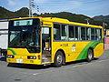 Ōdai Town Bus 20100118.jpg