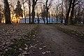 Весняний ранок у Лизогубівському парку.jpg