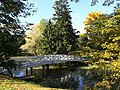 Горбаты мостик (вид со стороны господского дома).jpg