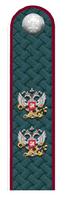 Действительный гос. советник РФ 2 класса ФНС.png