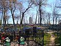 Кладбище - panoramio (17).jpg