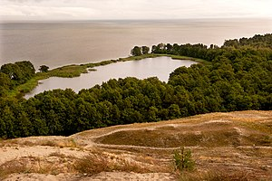 Curonian Spit National Park (Russia) - Image: Лебедь озеро