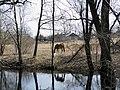 Лошадка - panoramio (1).jpg
