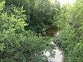Нива (река, впадает в Сундозеро) 2.jpg