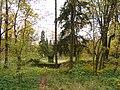 Осень в Дворцовом парке Гатчины. Амфитеатр - panoramio.jpg