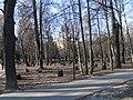 Парк Толстого - panoramio.jpg
