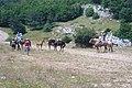 Прогулянка на конях по Ай-Петрінській яйлі.JPG