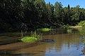 Река Илеть 12.jpg