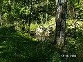 Р Волчья Разрушенный мост - panoramio.jpg