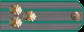 Саветнік мытнай службы I рангу.png