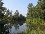 Смирновский пруд летом.JPG