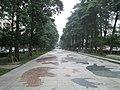 台中市北區 國立自然科學博物館前人行步道 - panoramio.jpg