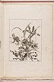 -Small Bouquets Tied With A Ribbon- MET DP210821.jpg