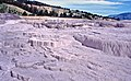 00 0348 Sinter terraces - Yellowstone National Park.jpg
