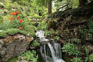 Marie-Louise Jaÿ - Jaÿsinia garden in Samoëns