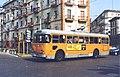 12929-Filobus Alfa Romeo 1000 Aerfer 8035.jpg