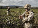 12th Marine Regiment Maneuvers Through Dragon Fire Exercise 15 150307-M-XX123-337.jpg