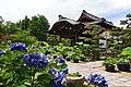 130706 Hokongoin Kyoto Japan13s3.jpg